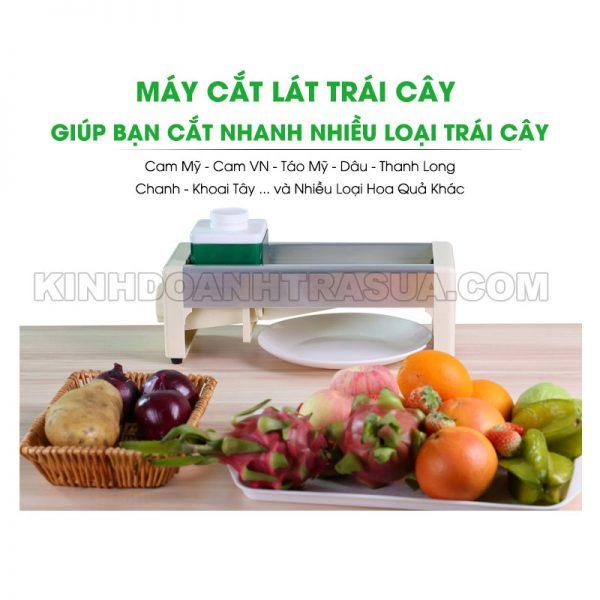 may-cat-lat-trai-cay-02