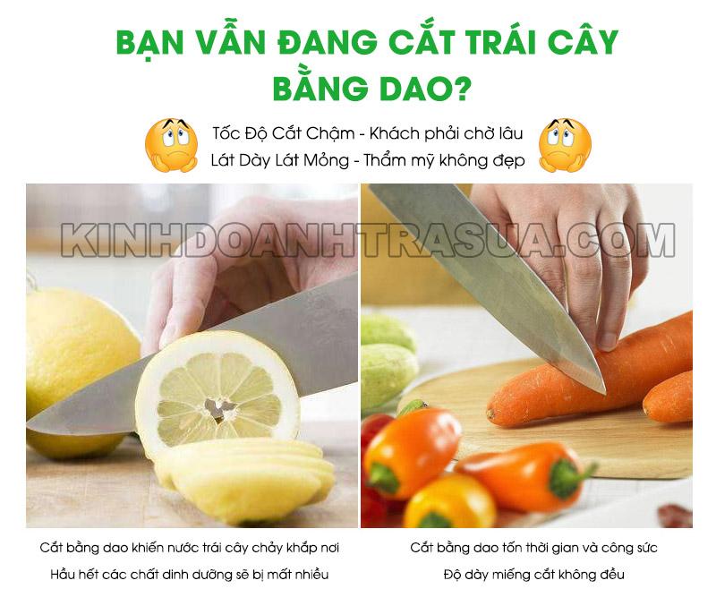 may-cat-lat-trai-cay-03