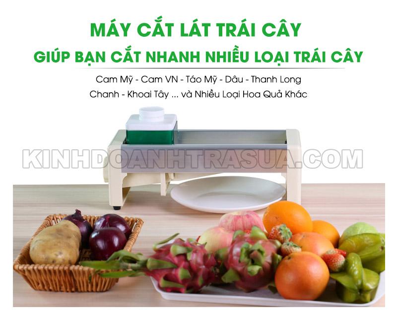 may-cat-lat-trai-cay-tien-dung